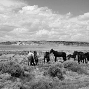 """Unframed: A Photo Journey through Navajo and Hopi Nations, 1977-1978"" Exhibition Opens April 29, 2021"